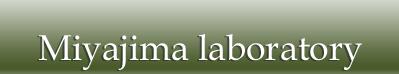 Miyajima Lab