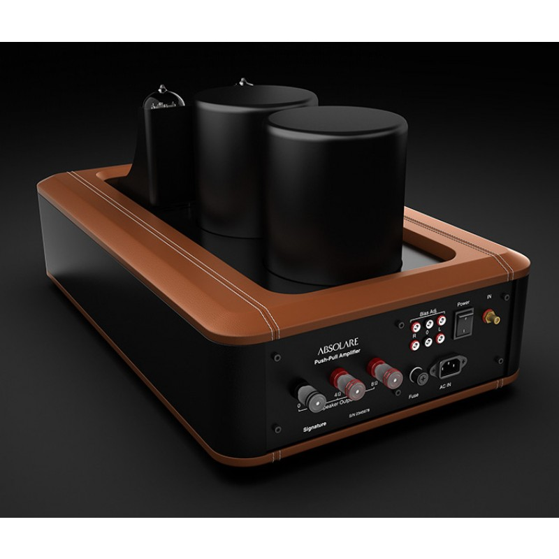 Absolare Passion Push-Pull Mono Amplifier
